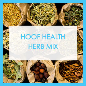 Hoof Health Herb Mix